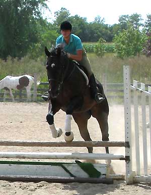 Haycroft Stables Boarding Equestrian Event Center Maple Ontario - Riding ...